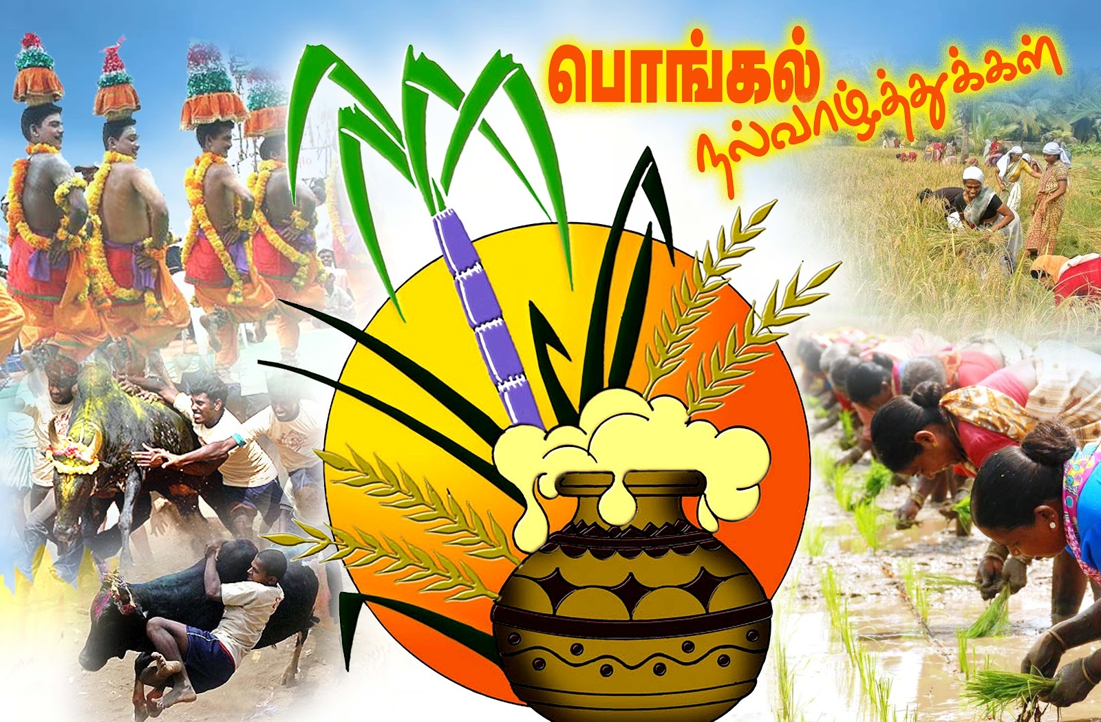 Pongal greeting 1 indian born british author of childrens books pongal greeting 1 m4hsunfo
